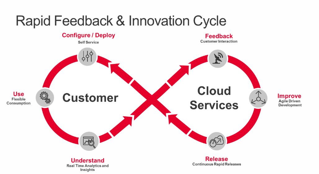 Rapid Feedback & Innovation Cycle