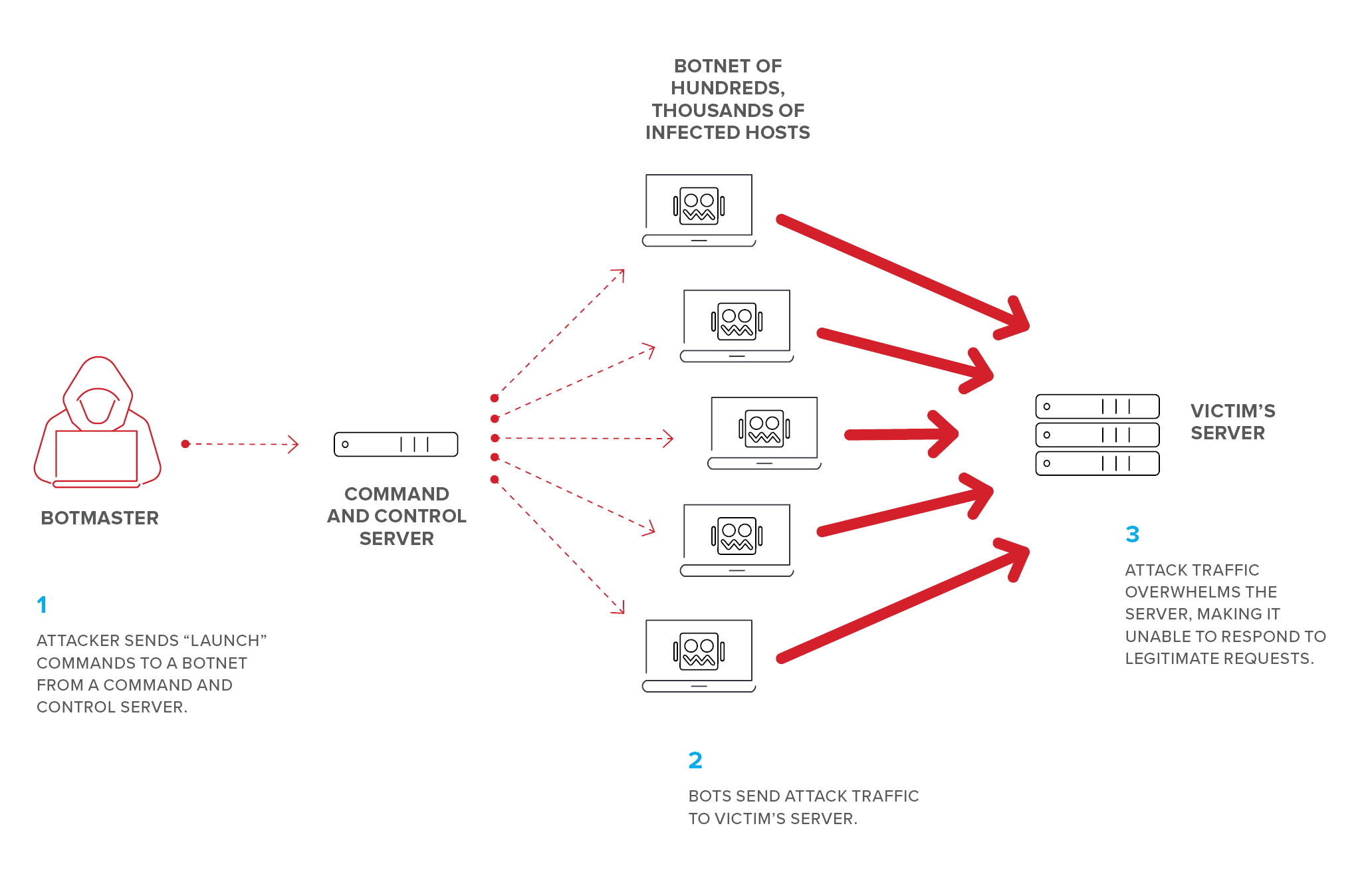 What Is a Distributed Denial of Service (DDoS) Attack?