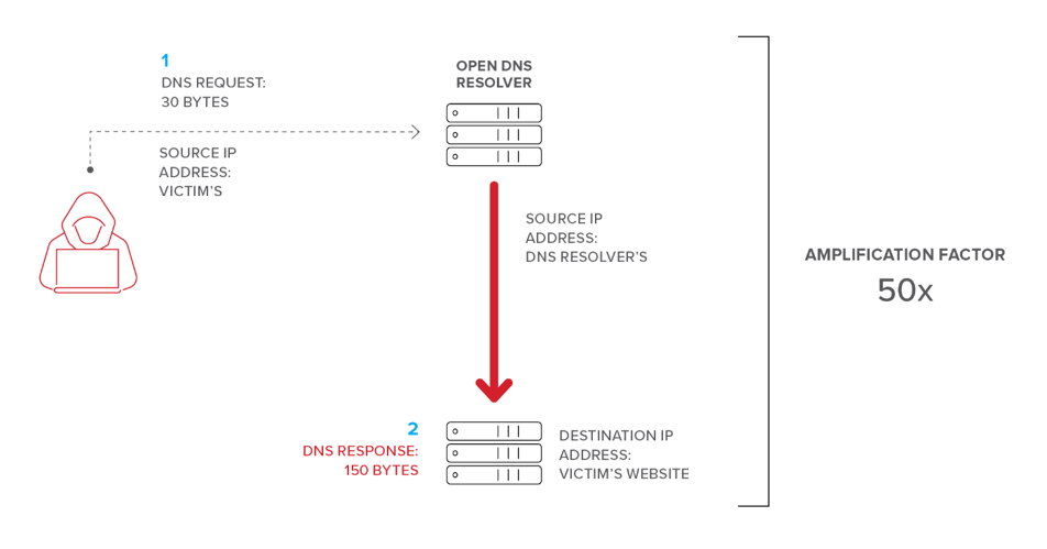 What is a DNS Amplification Attack?